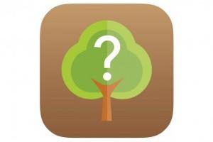 Fahatározó applikációt fejlesztett az Országos Erdészeti Egyesület
