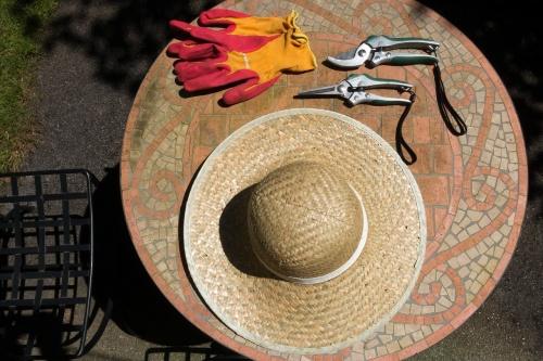 sun-hat-1480877_1280