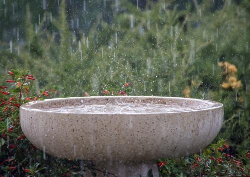 rain-645797_1920
