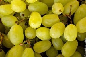 Édes most a csemegeszőlő