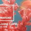 Virágkötők figyelem: 2019 év színe a pasztell korall