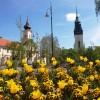 Május 1-ig lehet jelentkezni a Virágos Magyarország versenyre