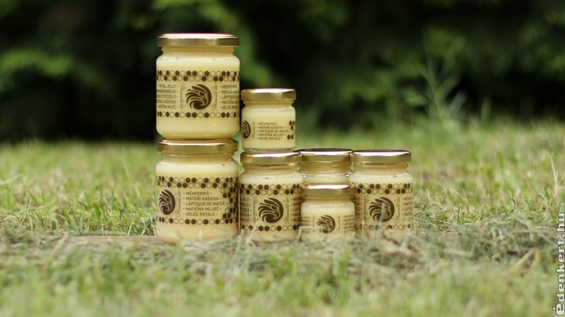 A méhpempő javítja a memóriát, és a demencia ellen is megoldást nyújt