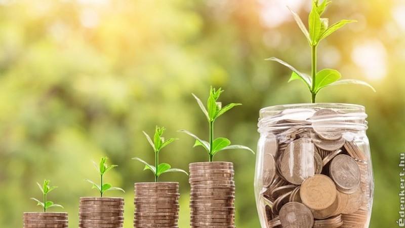 Hogyan érheted el a pénzügyi szabadságot, ami mellett a hobbidnak élhetsz?