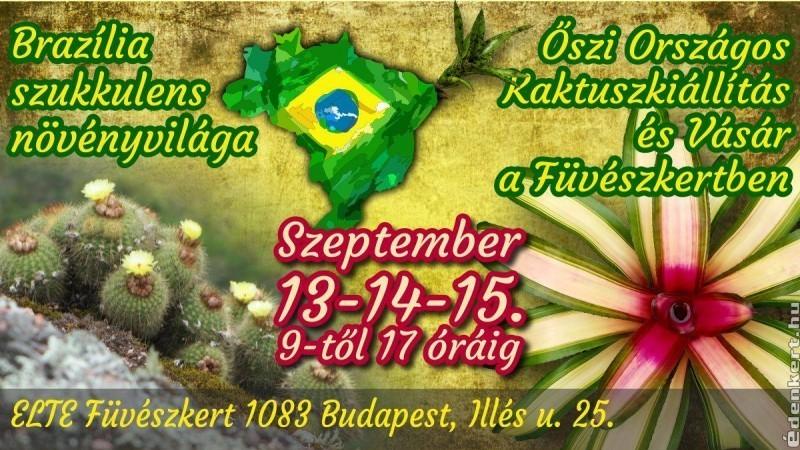 Brazília szukkulens növényvilága - őszi Országos Kaktuszkiállítás és Vásár