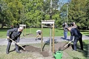 A 10 000. fát Tarlós István ültette a Margitszigeten