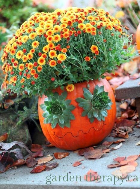 halloween_tok_otlet2