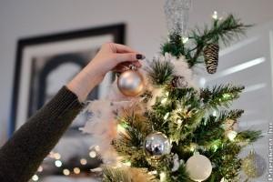 Dilemma karácsony előtt: valódi vagy műfenyő?