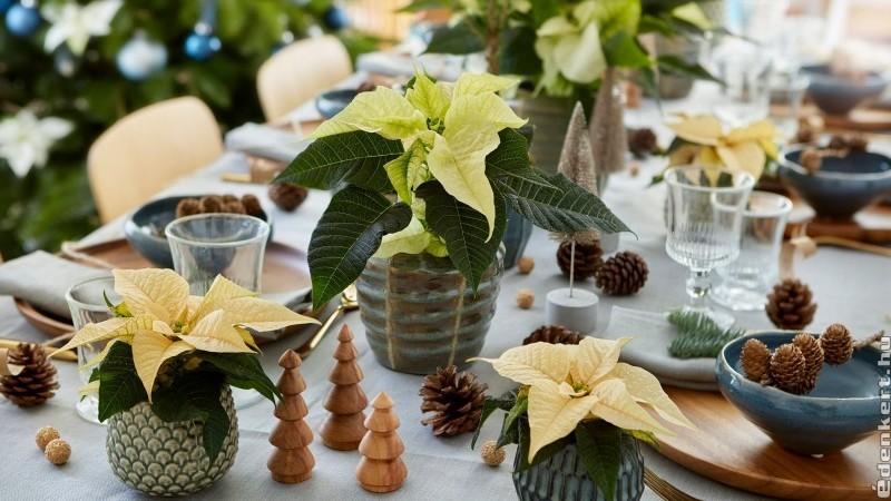 Karácsonyi asztaldíszítési ötletek