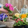Tavaszt idéző virágdíszek teraszra