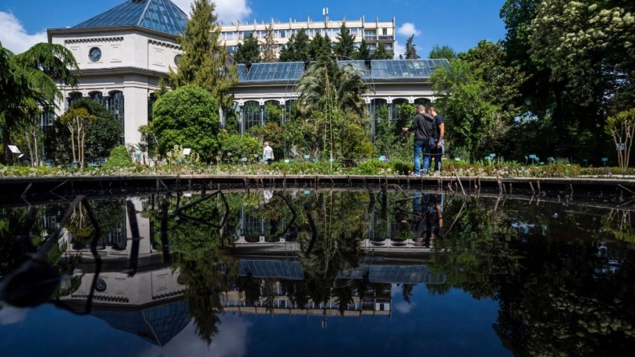 Újra látogatható a fővárosi Füvészkert
