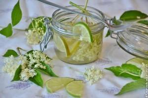 5 tipp, mit készítsünk a bodzavirágból