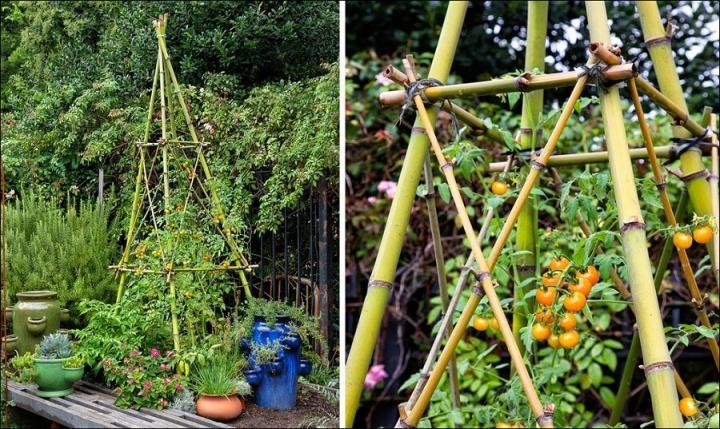 bambusz_tamasztek