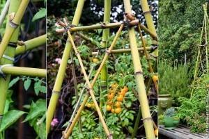 Bambusz támaszték készítése házilag