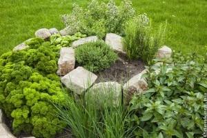 Építsünk fűszerspirált a kertbe, hasznos és mutatós