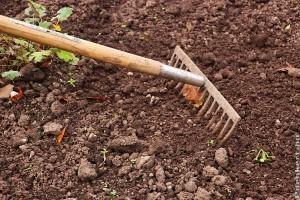 A talajjavításról dióhéjban