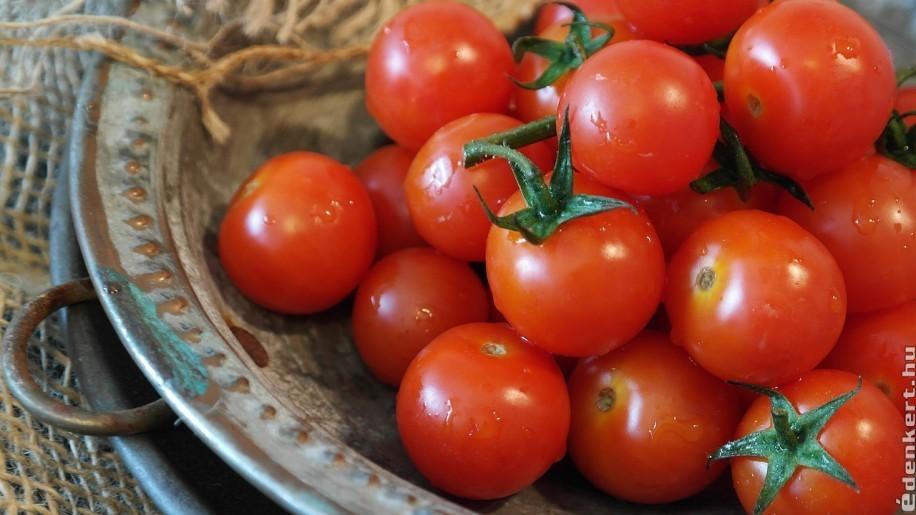 Paradicsom: zöldség vagy gyümölcs?