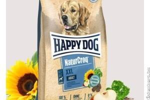 Élelmiszerek, amiket NE adj a kutyádnak