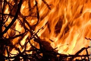 Januártól tilos avart égetni a kertben