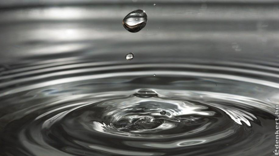 Érdekes és megdöbbentő tények a Föld vízkészlete kapcsán