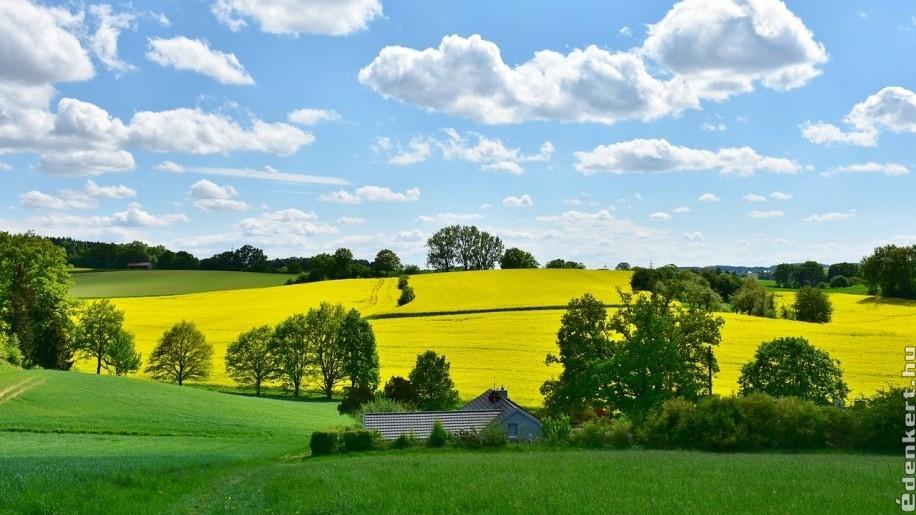 Természetvédelmi, vadgazdálkodási és méhészeti szakmai összefogás az agrártámogatások megváltoztatásáért