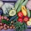 Hogyan tároljuk a zöldségeket és gyümölcsöket?