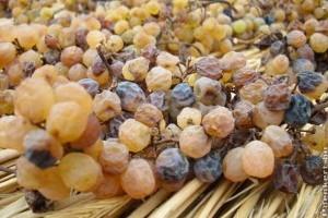 Szalmaborhoz töppesszünk szőlőt! Egy eljárás, amellyel kivédhetők a klímaváltozás kedvezőtlen hatásai a szőlőtermesztésben