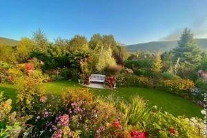A kertész kertjét gyomlálni sem kell - a trükk videón