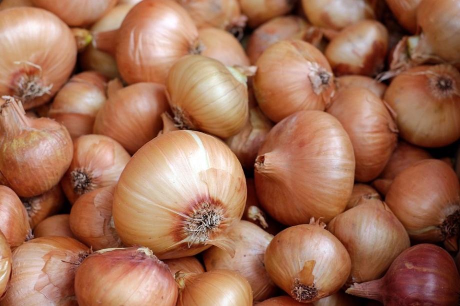 onions-1397037_960_720