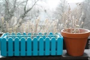 Hétvégére fagyos éjszakák jönnek, vigyük védett helyre a fagyérzékeny növényeket