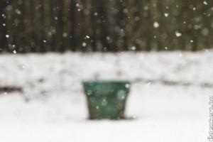 Téli munkák a kertben
