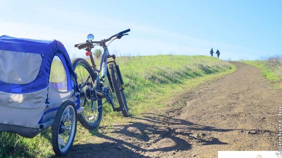 Ismerkedj meg az északi országok kerékpáros kultúrájával, és használj te is biciklis utánfutót!