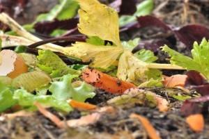Mentsük meg a környezetünket komposztálóval