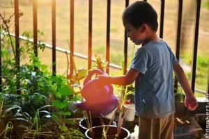 5 tipp, hogy gyerekbarát legyen a kertünk!