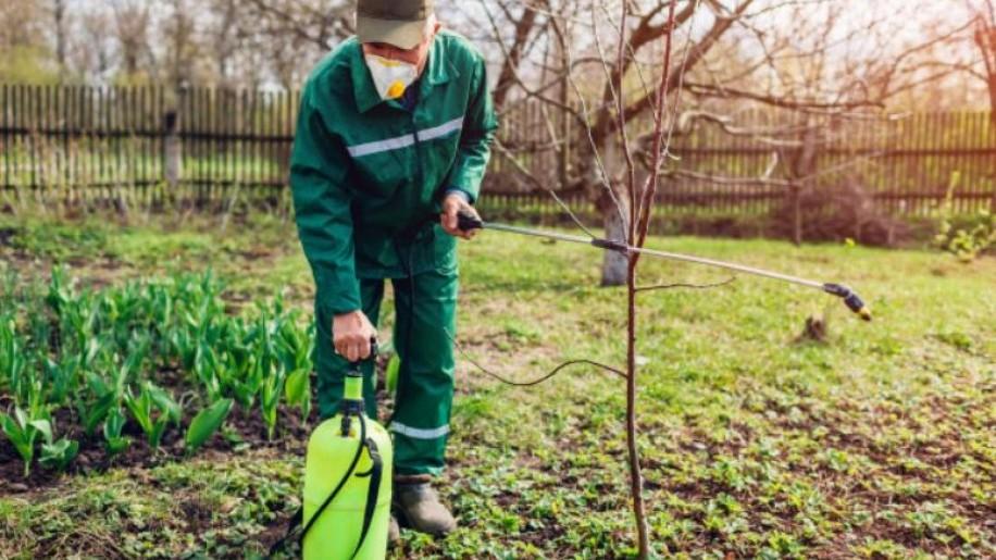 Lemosó permetezés fontossága tavasszal