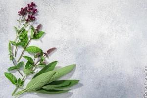 Íme, a top 3 gyógynövény, ha támad a megfázás!