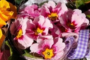 3 virág ötlet nőnapra
