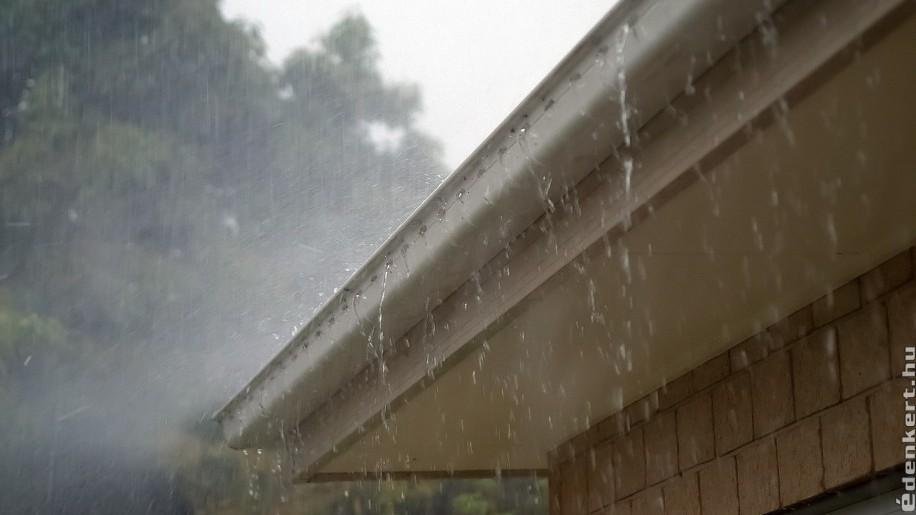7 tipp, hogyan hasznosítsuk az esővízet