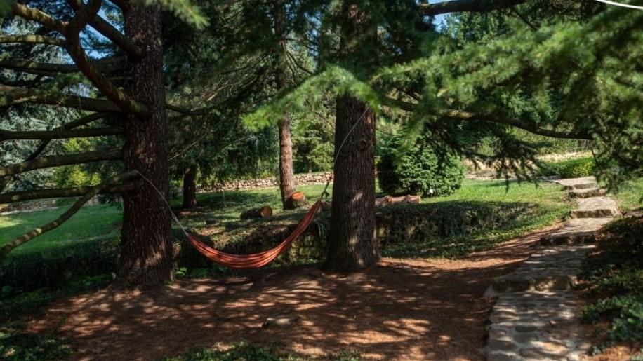 Fogadj örökbe egy fát a Folly Arborétumban!
