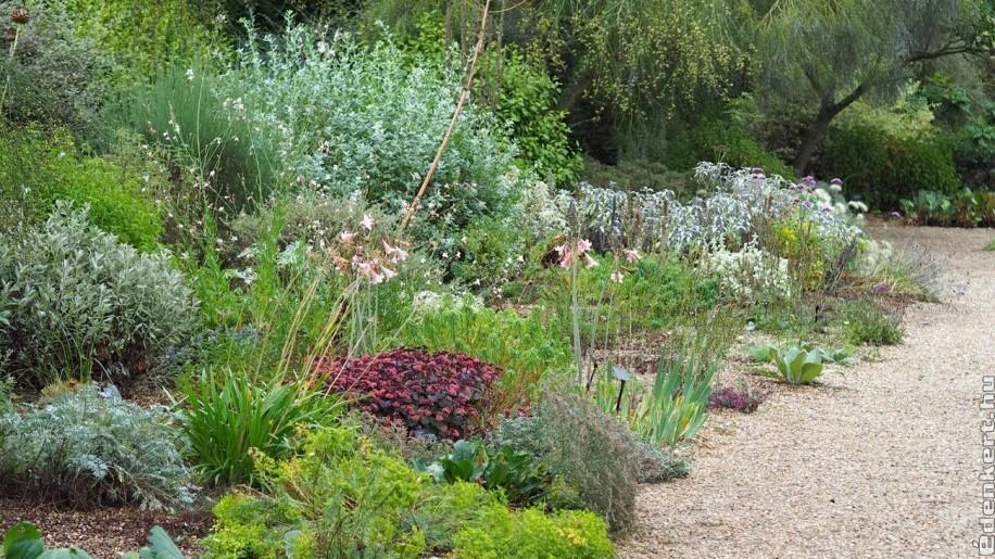 Sóder a kertben? Nagyon sok esetben szükség lehet rá!