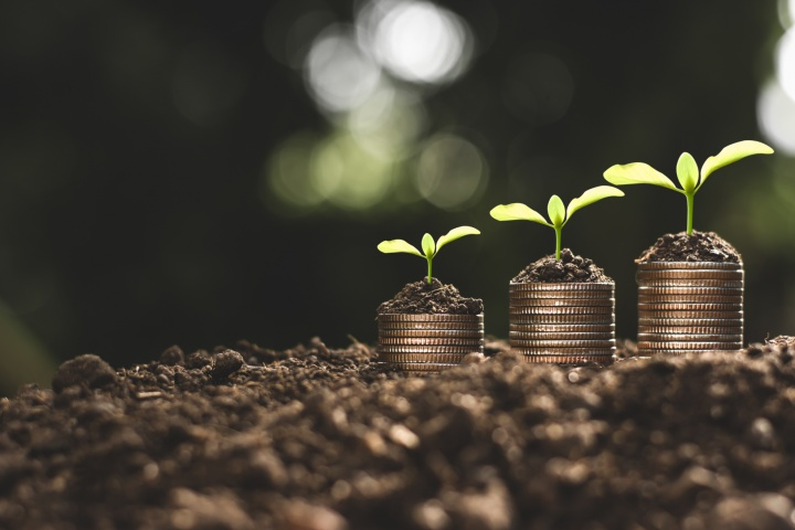 financial-growth-coins-seedling-1