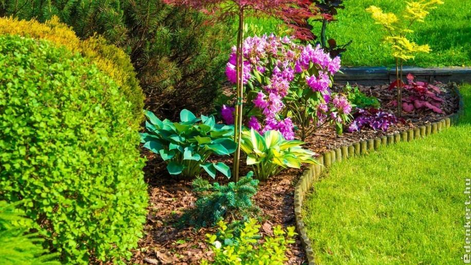 5 kreatív, kerti szegély ötlet – az ápolt, sokszínű kertekhez