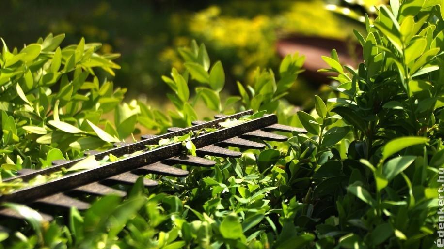 Az akkus kerti gépek valódi alternatívát jelentenek az elektromos eszközökkel szemben?