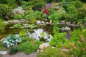 A víz ereje: 5 ötletes megoldás, amivel oázissá varázsolhatjuk a kertet!