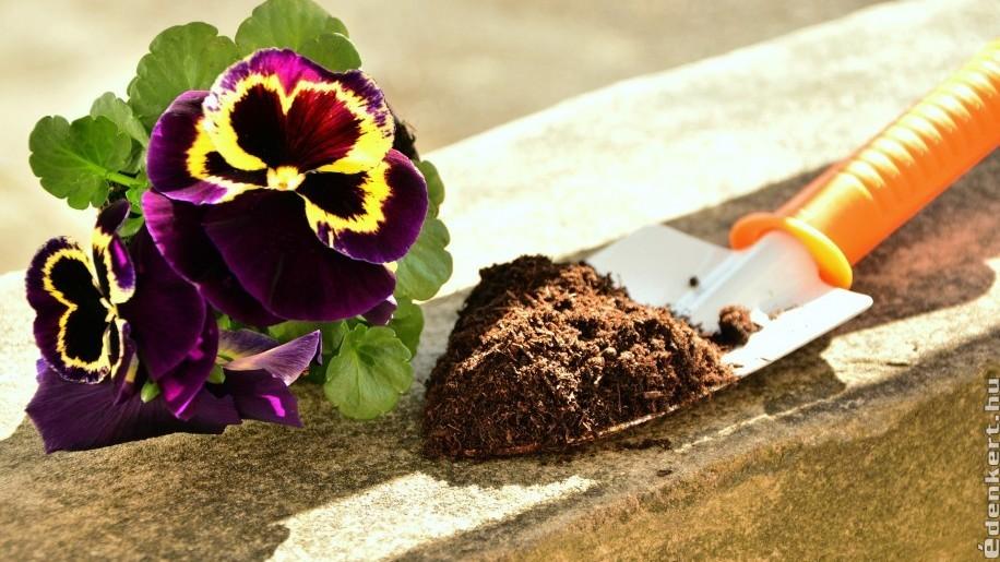 Hogyan készítsünk ingyen virágföldet házilag?