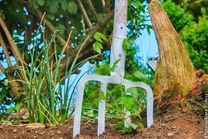 Hogyan válasszunk kerti szerszámokat, hogy a munka örömteli legyen?