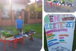 Ügyes kiskertész: saját növényeit árulja egy budapesti kisfiú