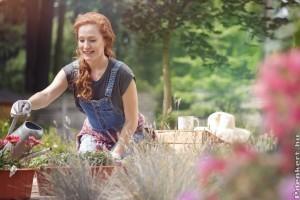7 lépés, hogy varázslatos legyen a kerted a nyári hőségben is