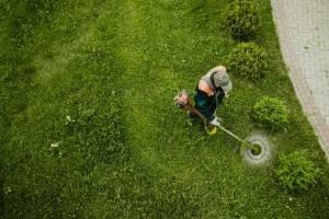 Nincs időd a kertre? A Wilio a megoldás!