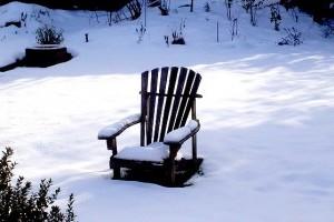 A legfontosabb kerti teendők télen